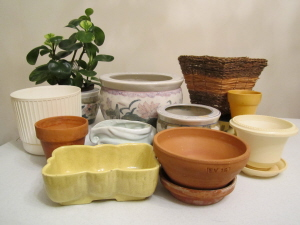 plant pots for indoors